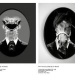 Catalogue-renoma6-6
