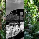 jungleville3